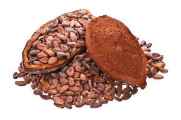 Cocoa Powder (Theobroma cocoa)